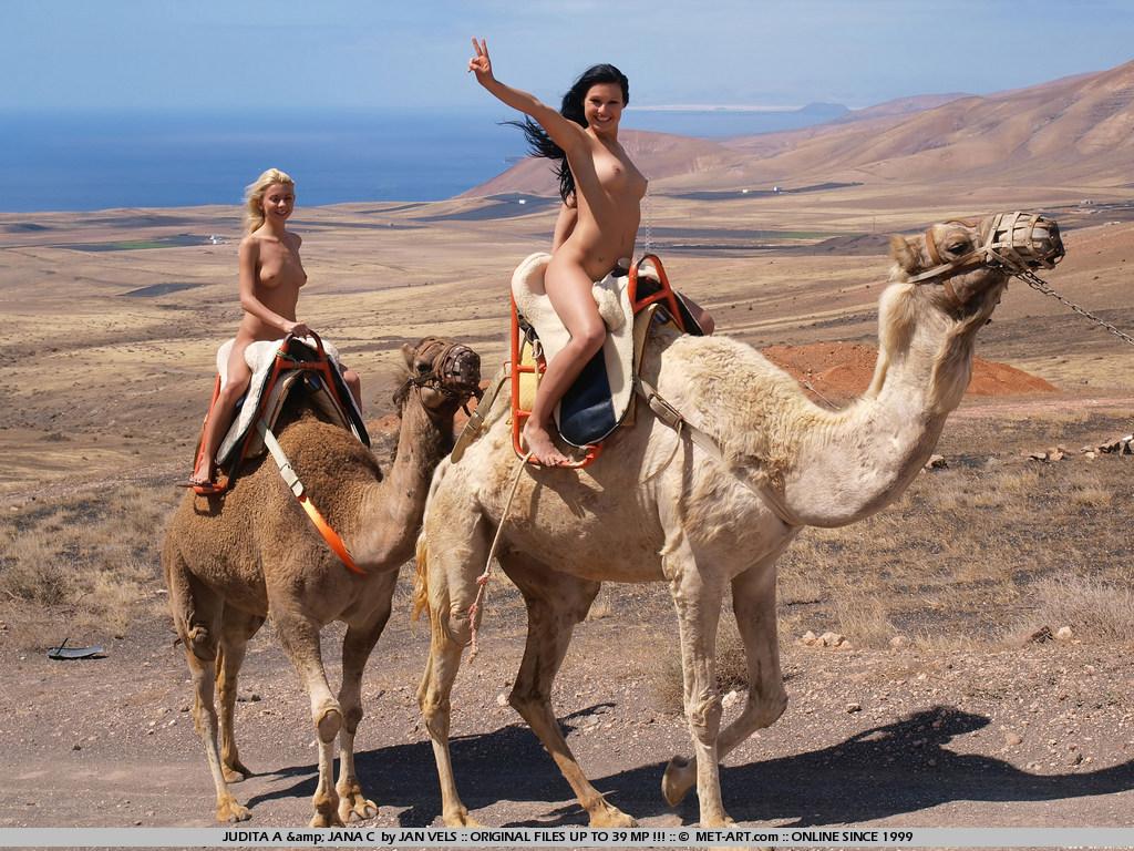 Сэкс с верблюдом 9 фотография